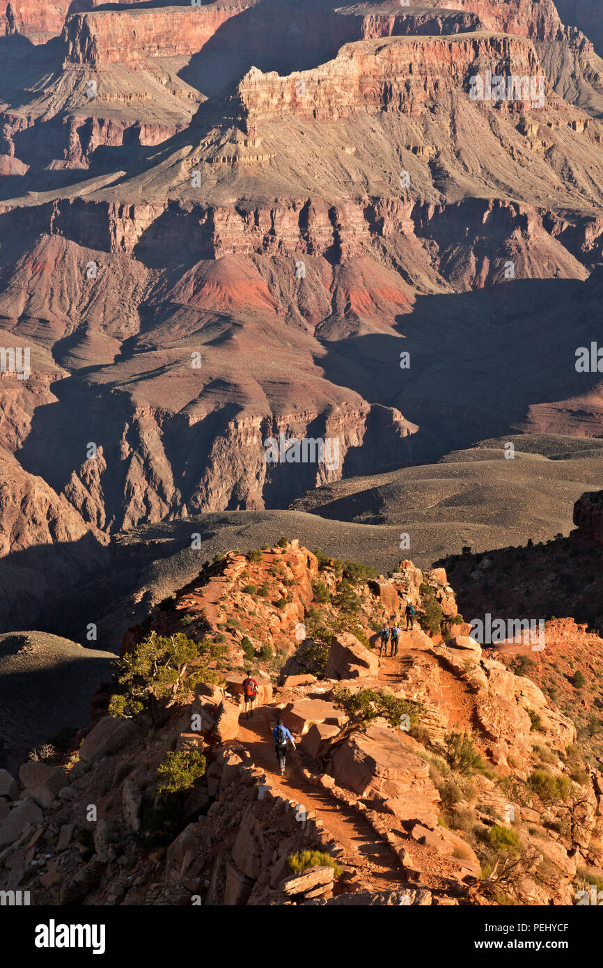 AZ00279-00...ARIZONA - Early morning hikers on the South Kaibab Trail in Grand Canyon National Park. - Stock Image