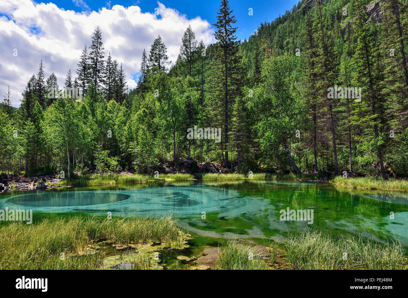 Amazing blue geyser lake in the mountains of Altai, Russia. Unique turquoise lake with crystal clear water and oval circular divorces, which change be - Stock Image