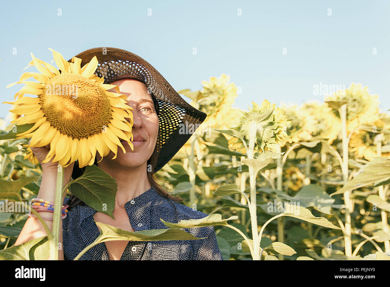 woman among the sunflowers Stock Photo