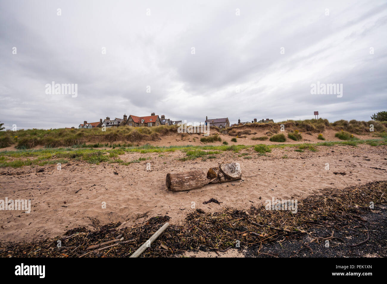 The beach and houses on the coast at Alnmouth,Northumberland,England,UK - Stock Image