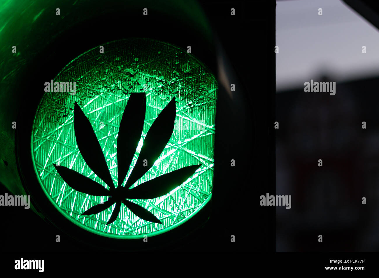A Sticker Of A Plant On A Green Traffic Light As A Symbol Of The