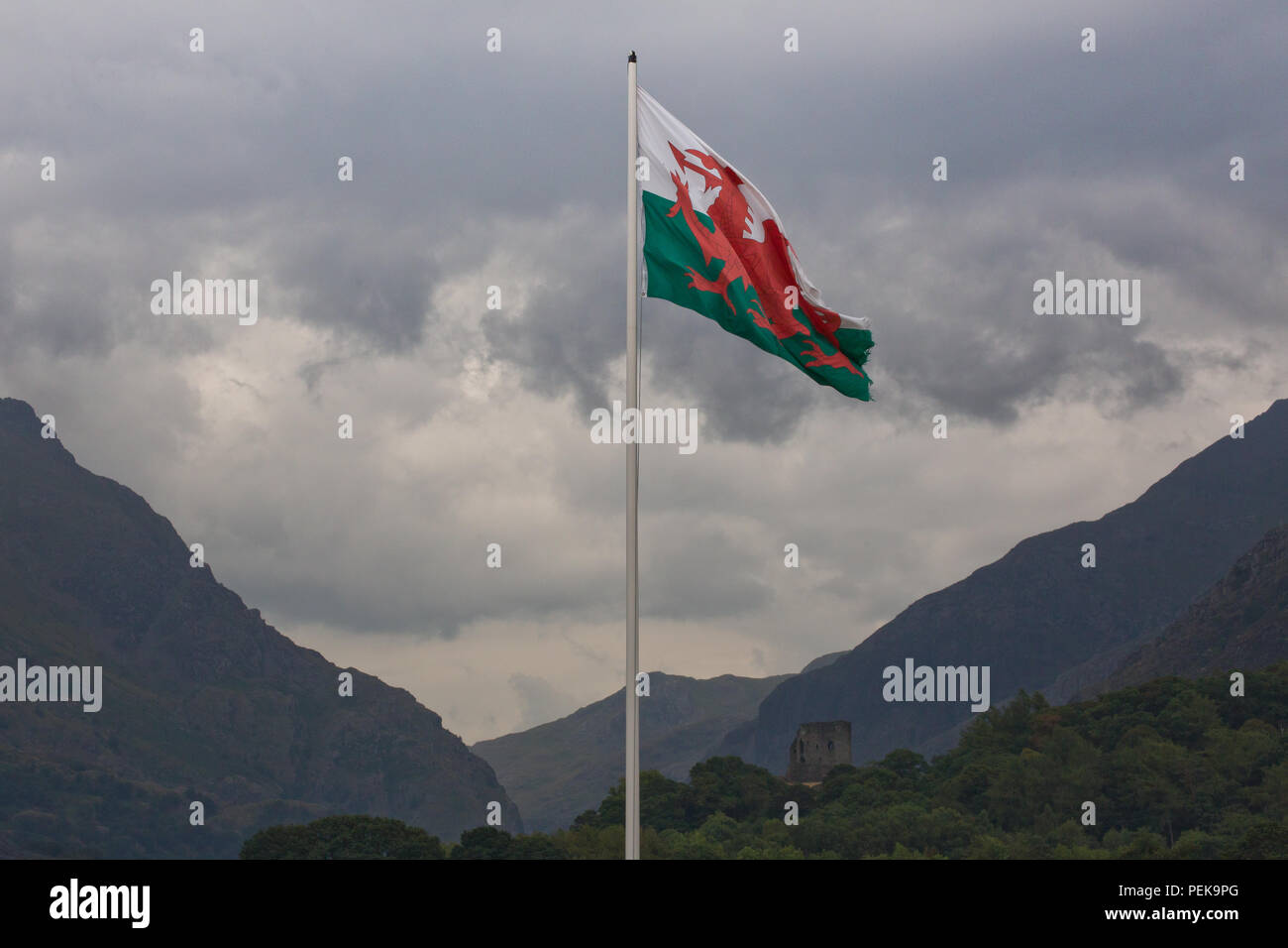 The Welsh flag flying in the heart of North Wales Stock Photo