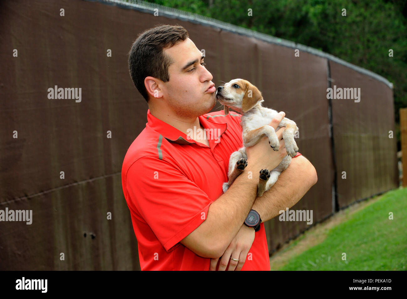 A young puppy, up for adoption, is consoled by a Latino male staff member of a local animal shelter in Gainesville, Georgia. - Stock Image