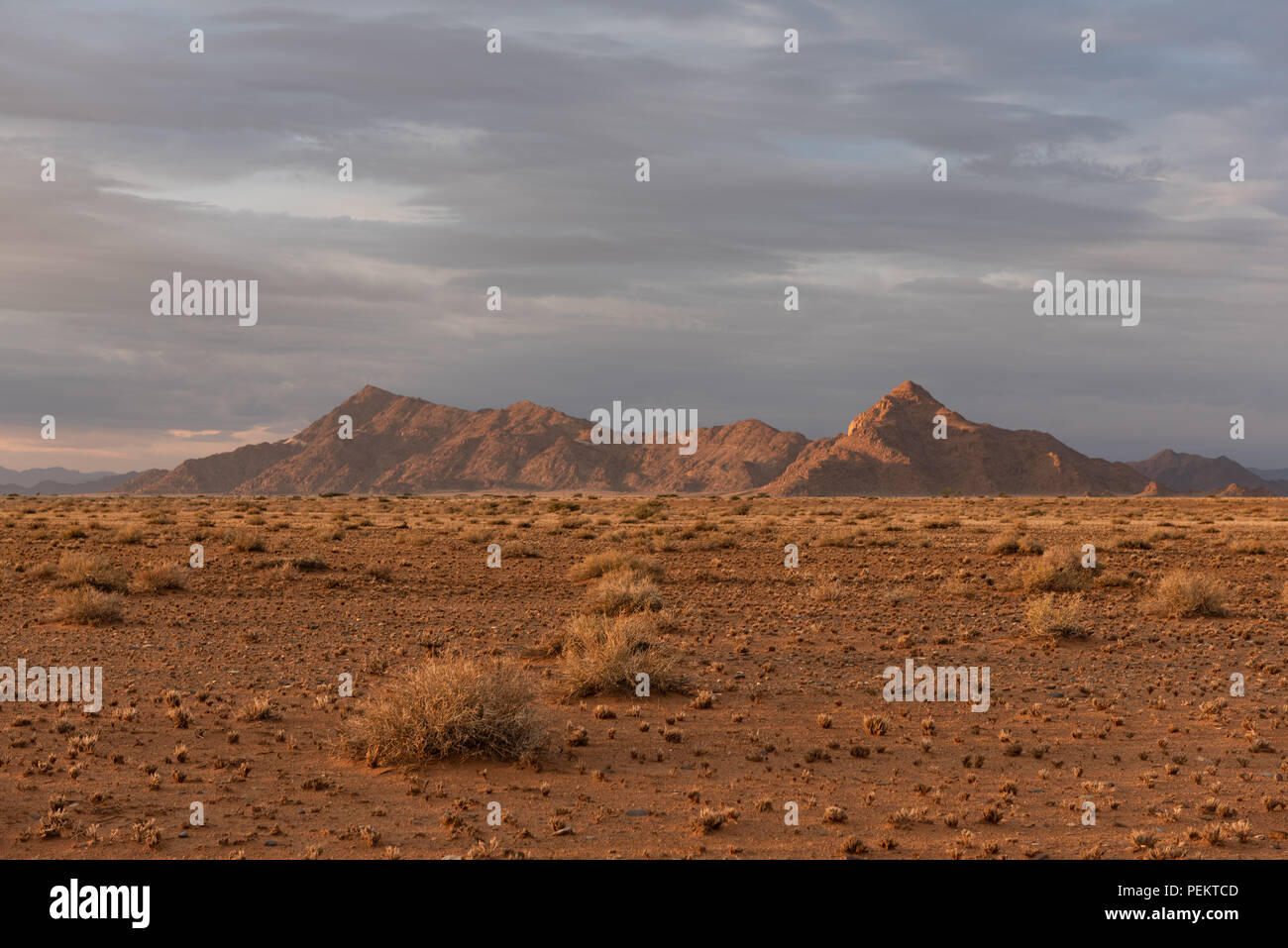 Early morning light lighting up mountains and grass in desert countryside, Namibia - Stock Image