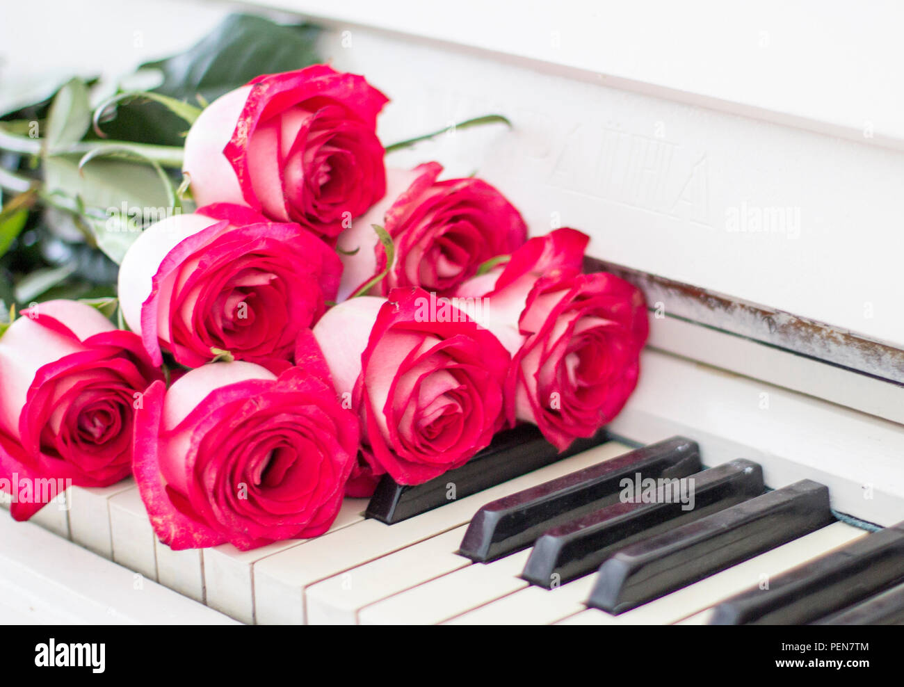 Piano Keys With Roses High Resolution Stock Photography And Images Alamy
