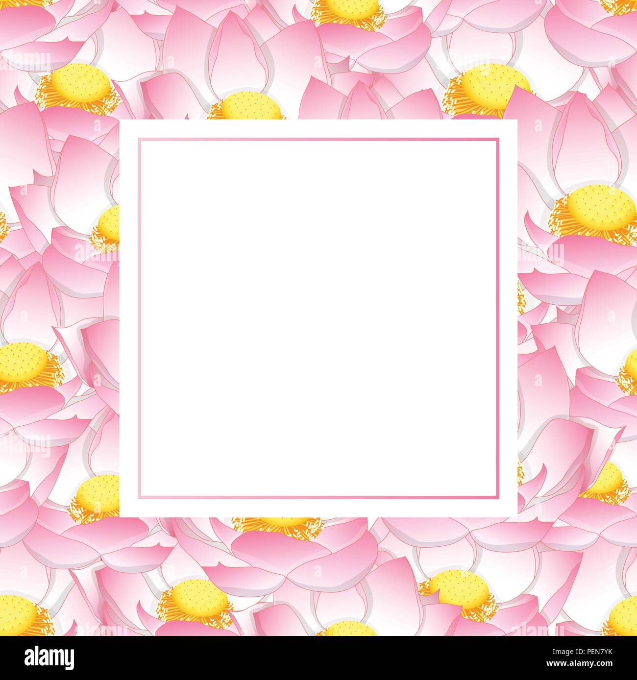 Lotus flower paint stock photos lotus flower paint stock images pink indian lotus banner card nelumbo nuciferasacred lotus bean of india izmirmasajfo