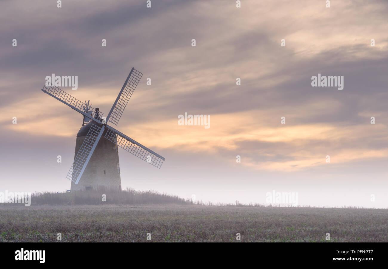 A new Horizon - Stock Image