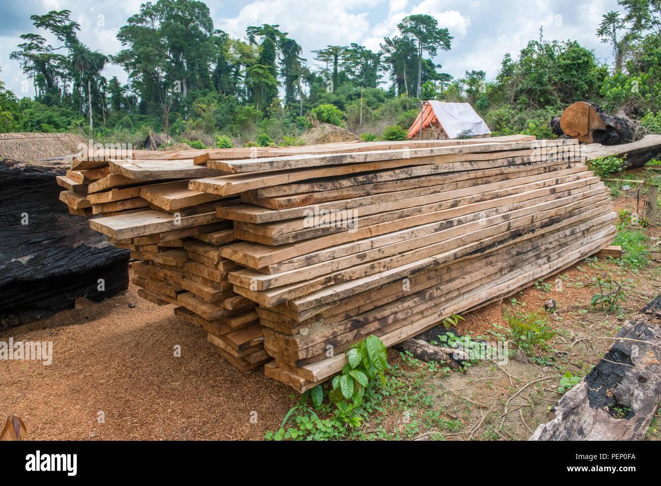 Stacked wood in Ganta, Liberia - Stock Image