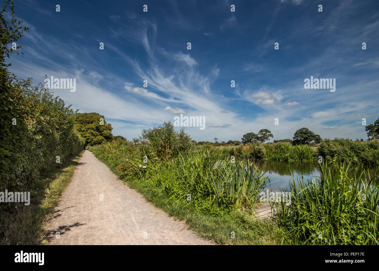 Chichester Canal towpath, Chichester, West Sussex, UK - Stock Image