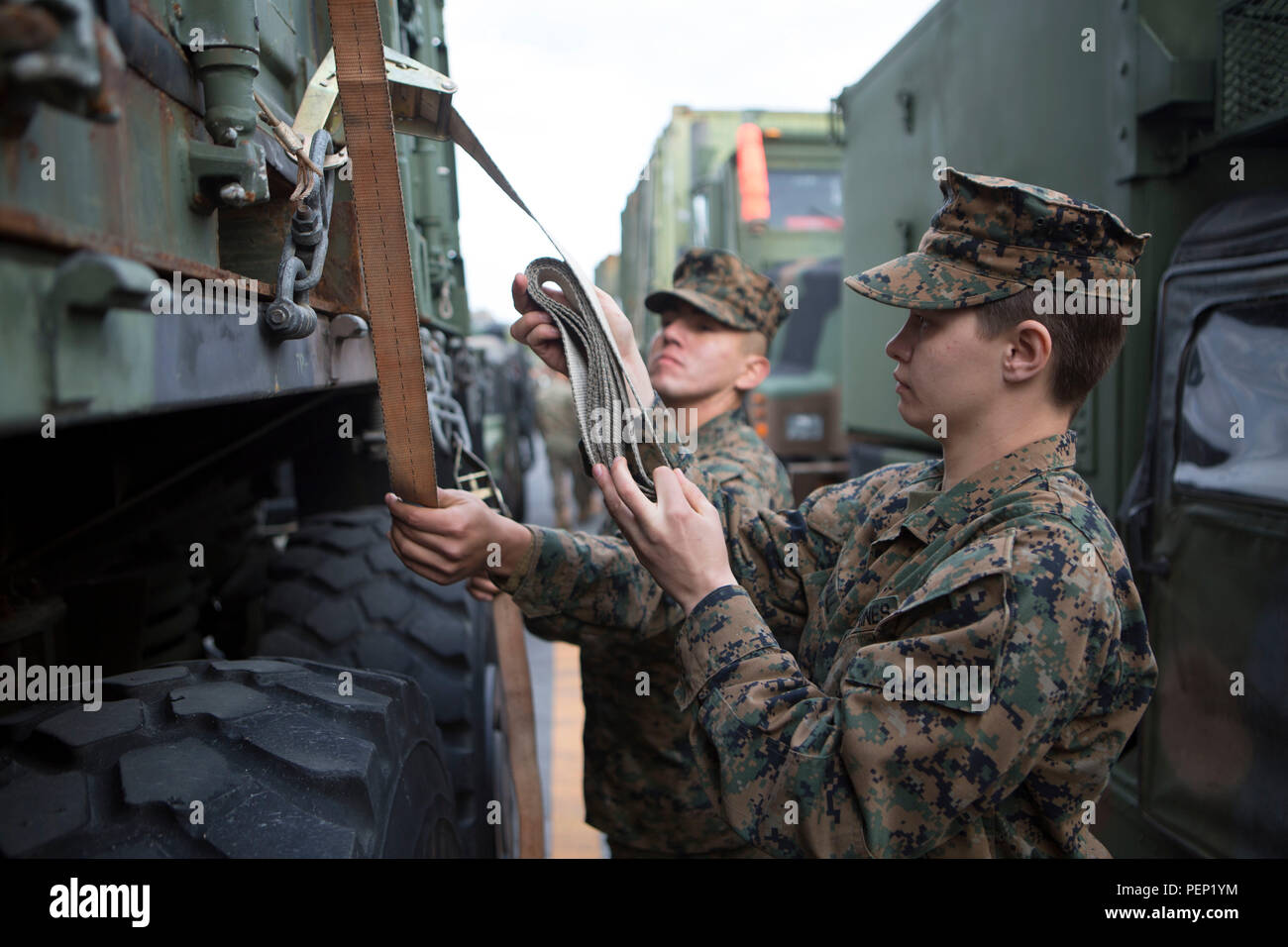 Lance Cpl. Elizabeth Hall, a motor transportation operator with Combat Logistics Battalion 31, 31st Marine Expeditionary Unit, works to secure cargo to a 7-ton truck in preparation for a convoy to embark equipment on the Navy ships of the USS Bonhomme Richard (LHD 6) Amphibious Ready Group, Jan. 26, 2016, on Camp Hansen, Okinawa, Japan. The Marines and sailors of the 31st MEU are gearing up for their spring deployment to the Asia-Pacific region. Hall is a native of Portsmouth, Ohio. (U.S. Marine Corps photo by Lance Cpl. Carl King Jr./Released) - Stock Image