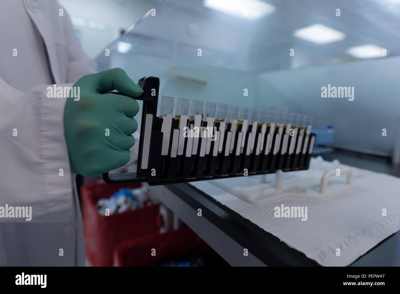 Laboratory technician holding test tubes - Stock Image