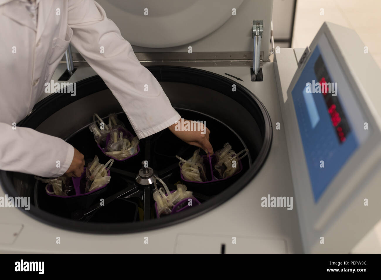 Laboratory technician placing blood bags in machine - Stock Image