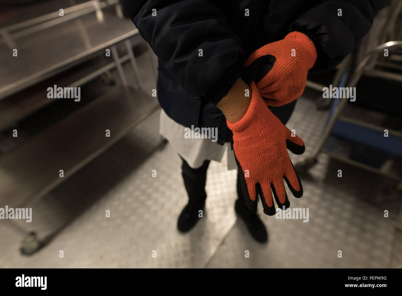 Laboratory technician wearing gloves in blood bank - Stock Image