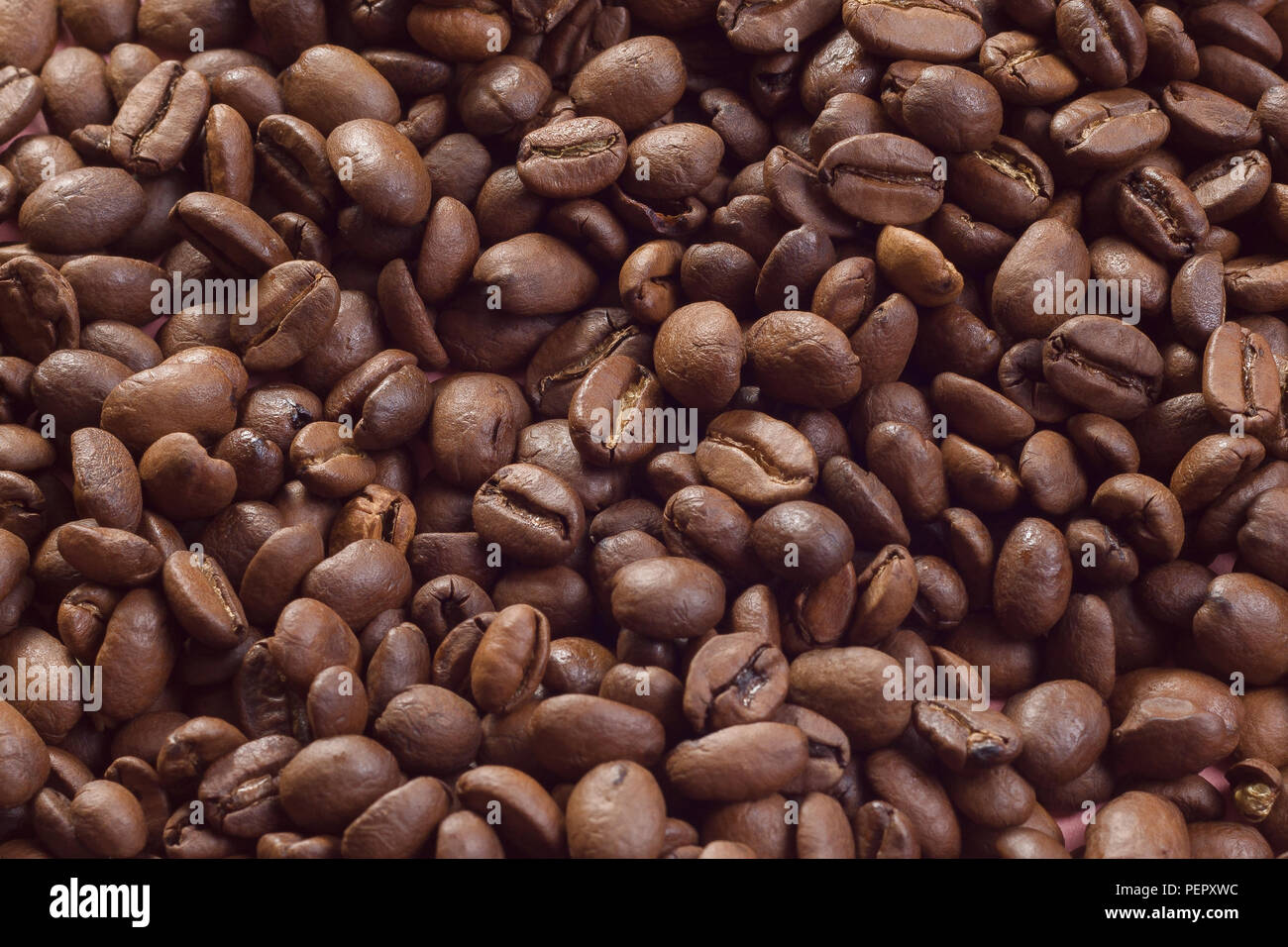 Lots of coffee beans website background textspace - Stock Image