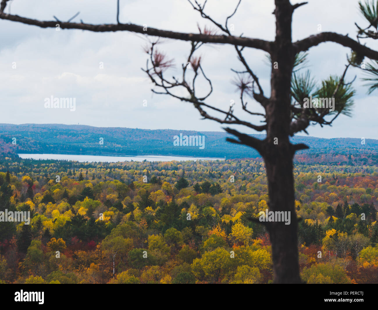 view over Fall forest and lake with colorful trees from above in Algonquin Park, Canada autumn Stock Photo