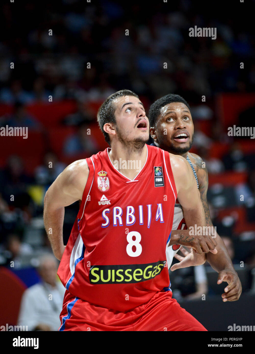 the latest 8209d 1bb89 Nemanja Bjelica Basketball Stock Photos & Nemanja Bjelica ...