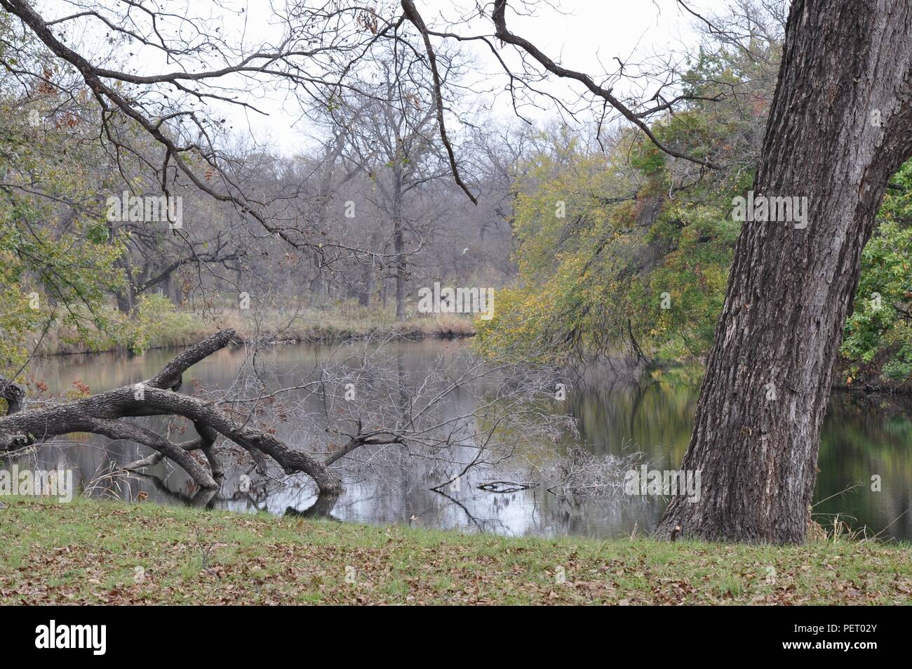 Enjoying the beauty - South Llano River State Park, Junction Texas - Stock Image