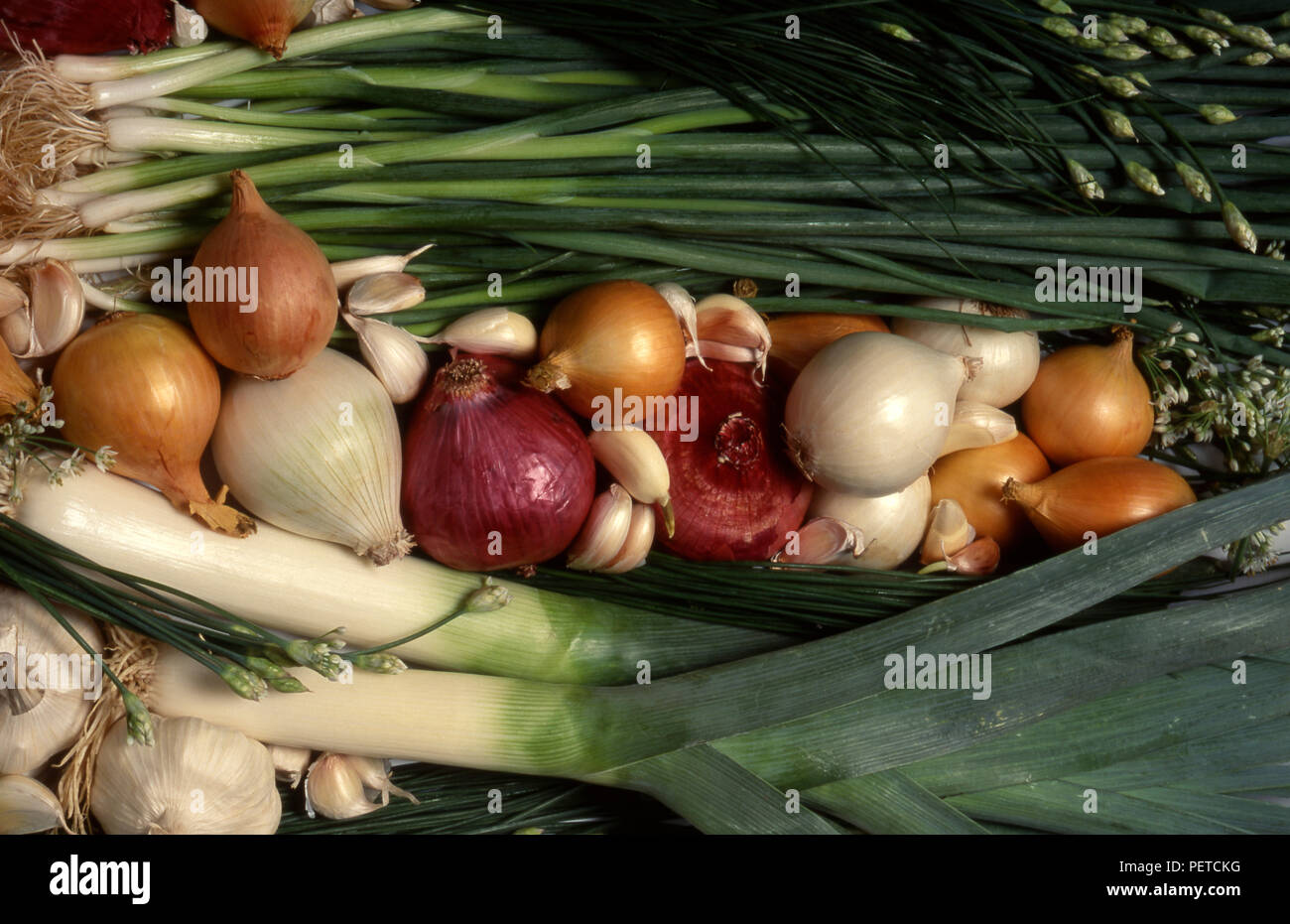 Assorted arrangement of fresh vegetables (Chives, garlic chives, shallots, onions, garlic and leeks - Stock Image