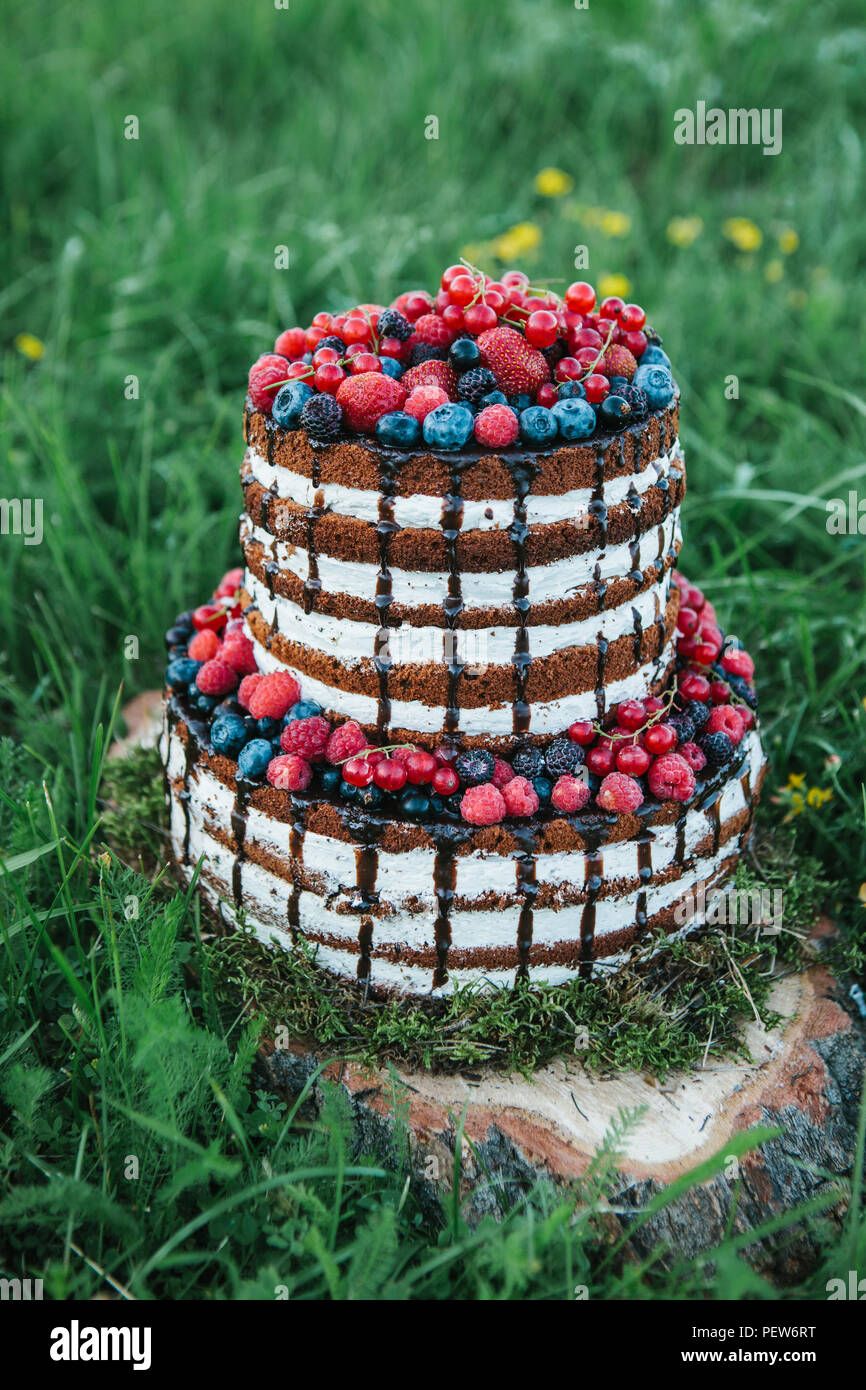 Cake or confectionery for a birthday or a holiday or a party. Cake with berries, strawberry, raspberry, blueberry, bilberry and hawthorn. - Stock Image