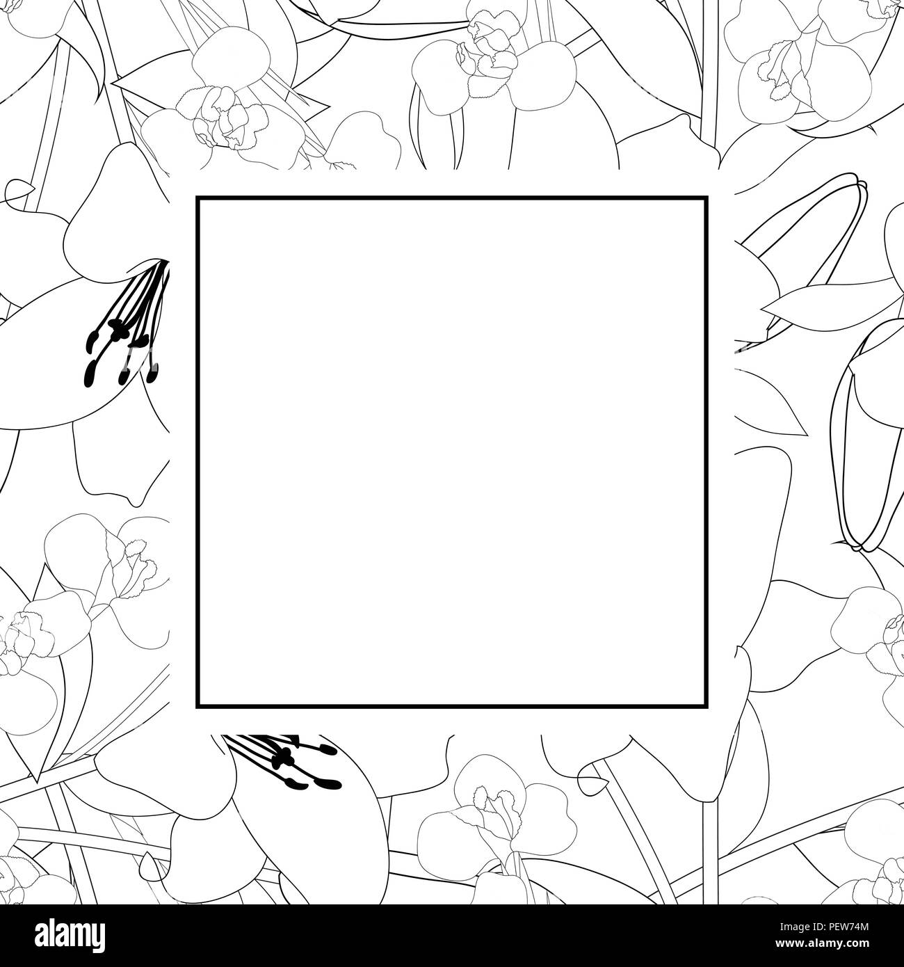Lily And Iris Flower Outline Banner Card Vector Illustration Stock
