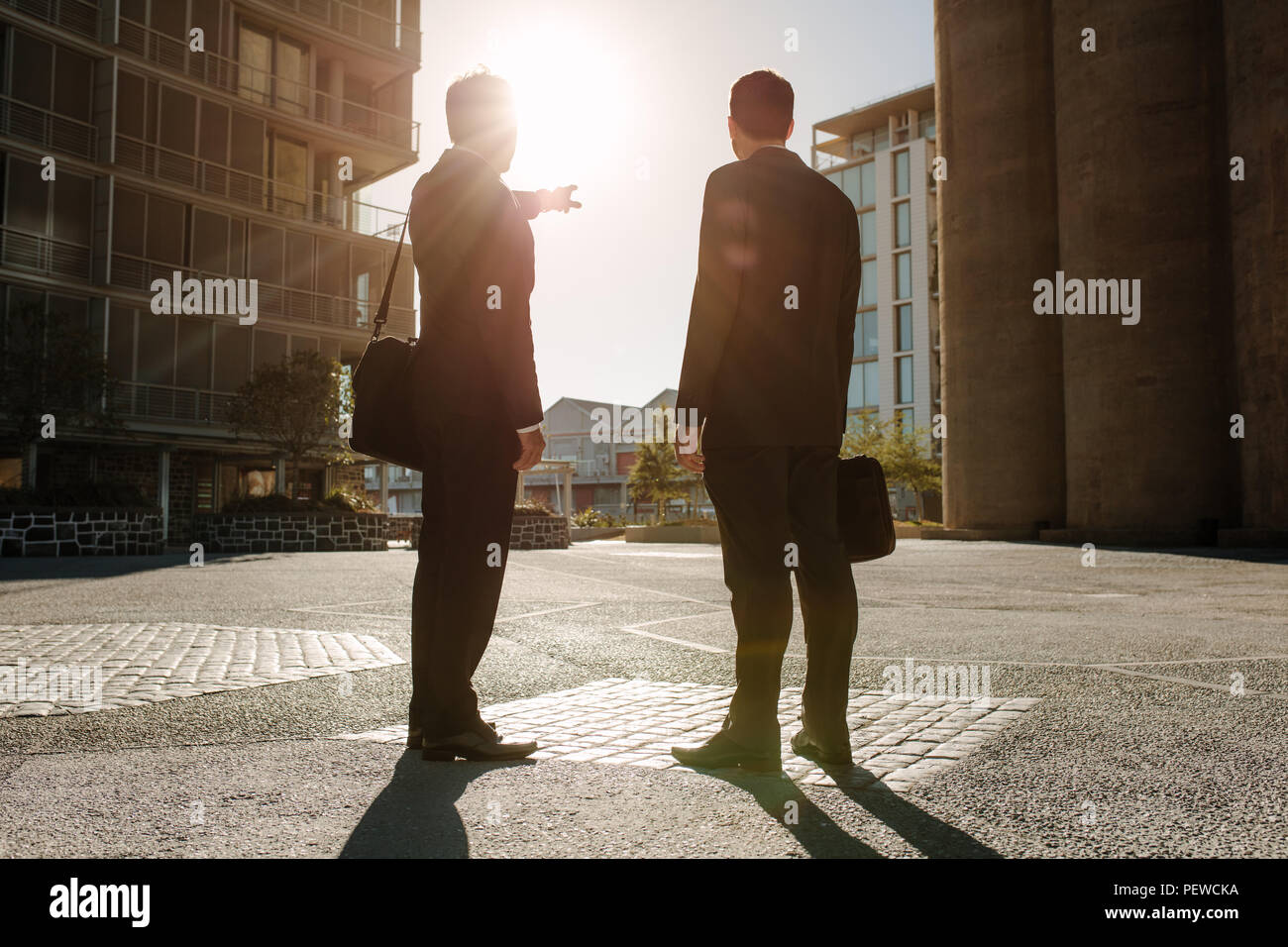 Rear view of business colleagues carrying office bags standing on street looking away with one person pointing towards a distant object. Business peop - Stock Image