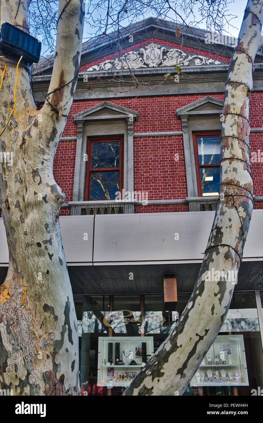 Creations Jewellers High Street Fremantle framed by decidious tree - Stock Image