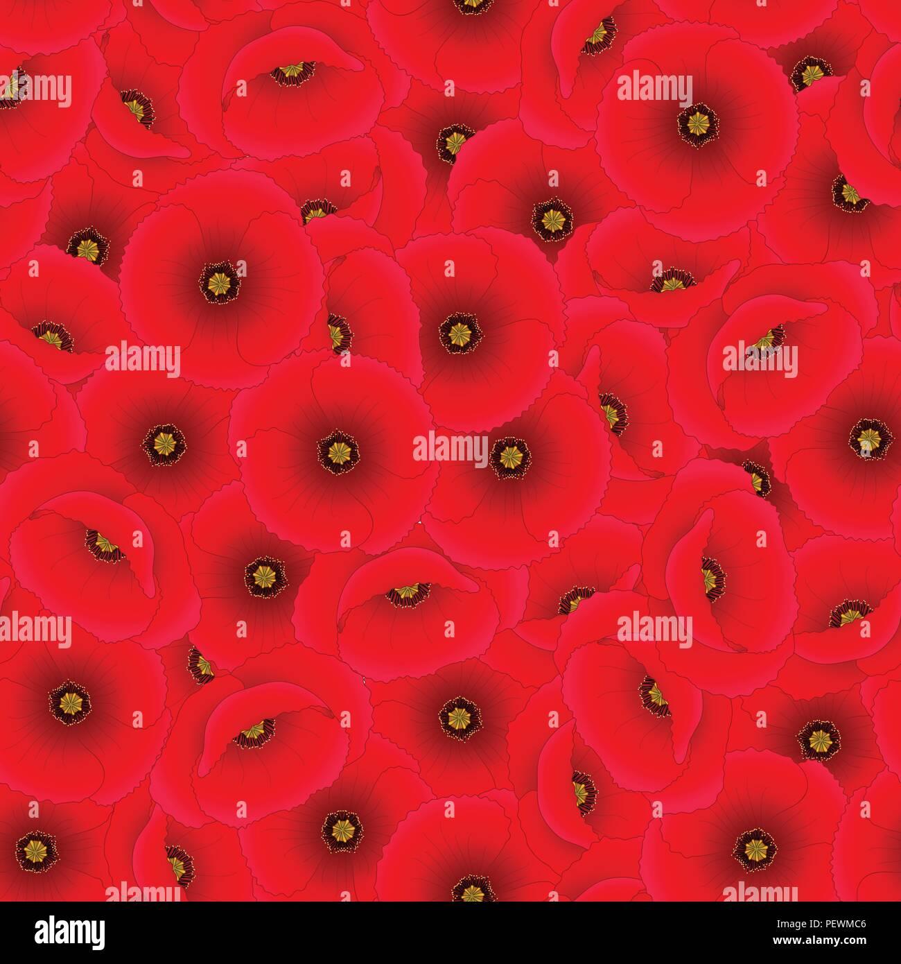 Papaver rhoeas Seamless Background or common poppy,corn poppy,corn rose,field poppy,Flanders poppy or red poppy. Vector Illustration. - Stock Vector