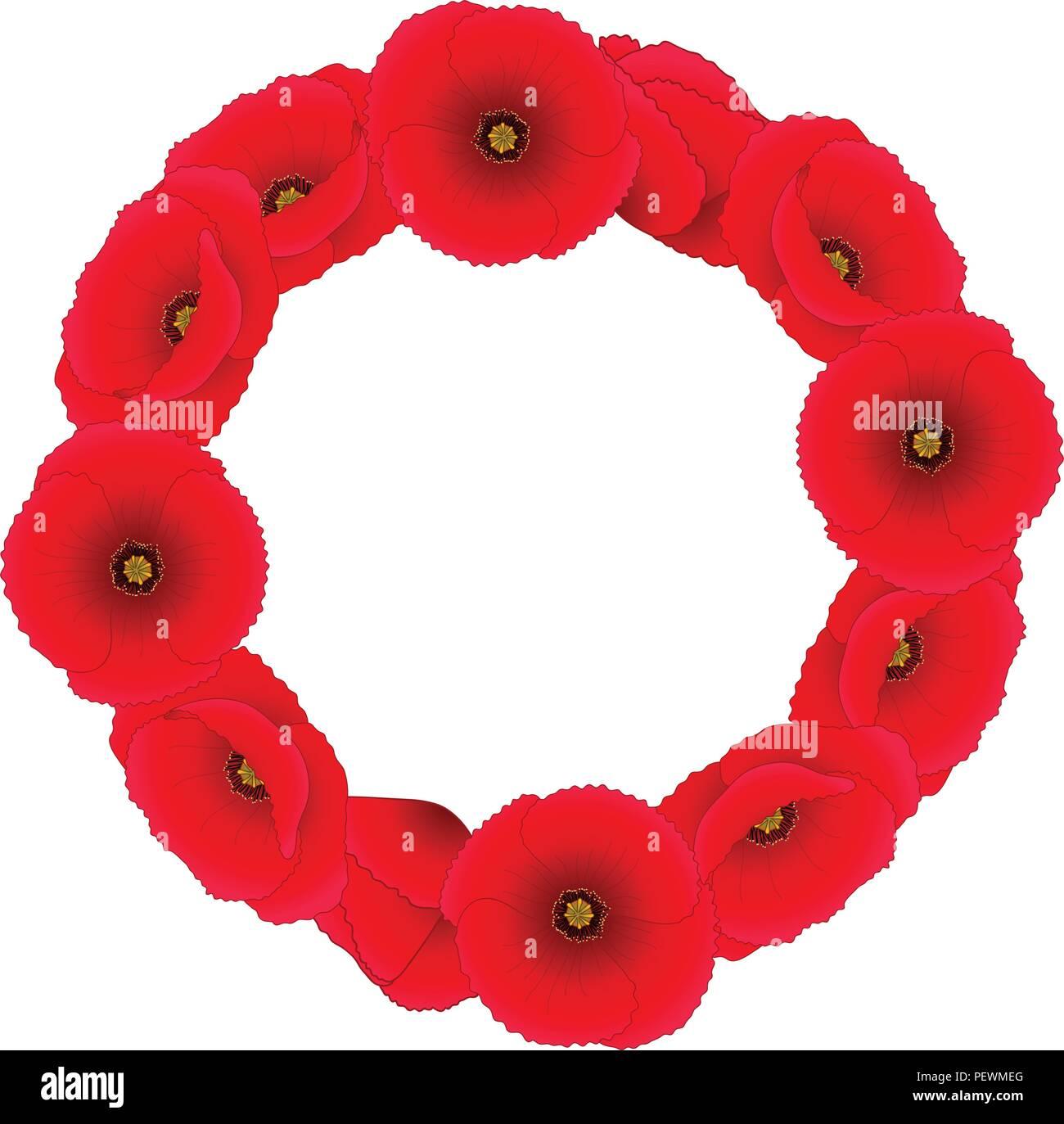 Papaver rhoeas Wreath or common poppy,corn poppy,corn rose,field poppy,Flanders poppy or red poppy. isolated on White Background. Vector Illustration. - Stock Vector