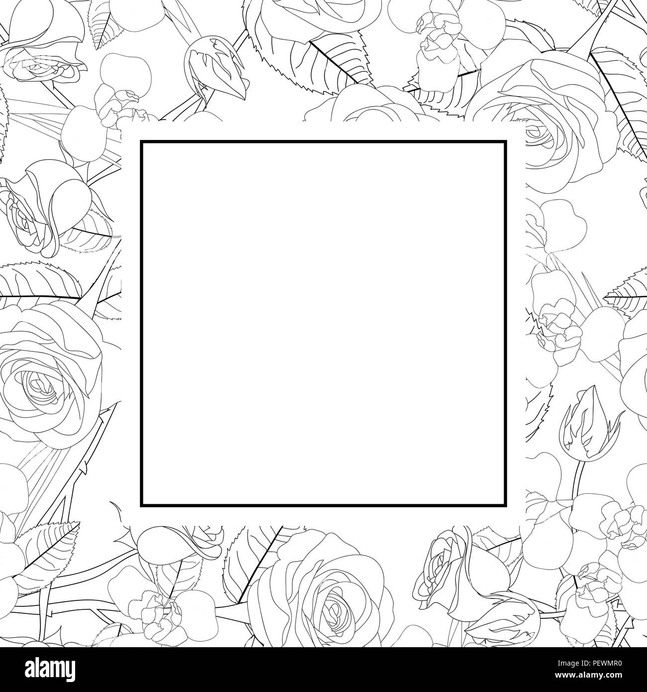 Black Vector Outline Rose Flower Black And White Stock Photos
