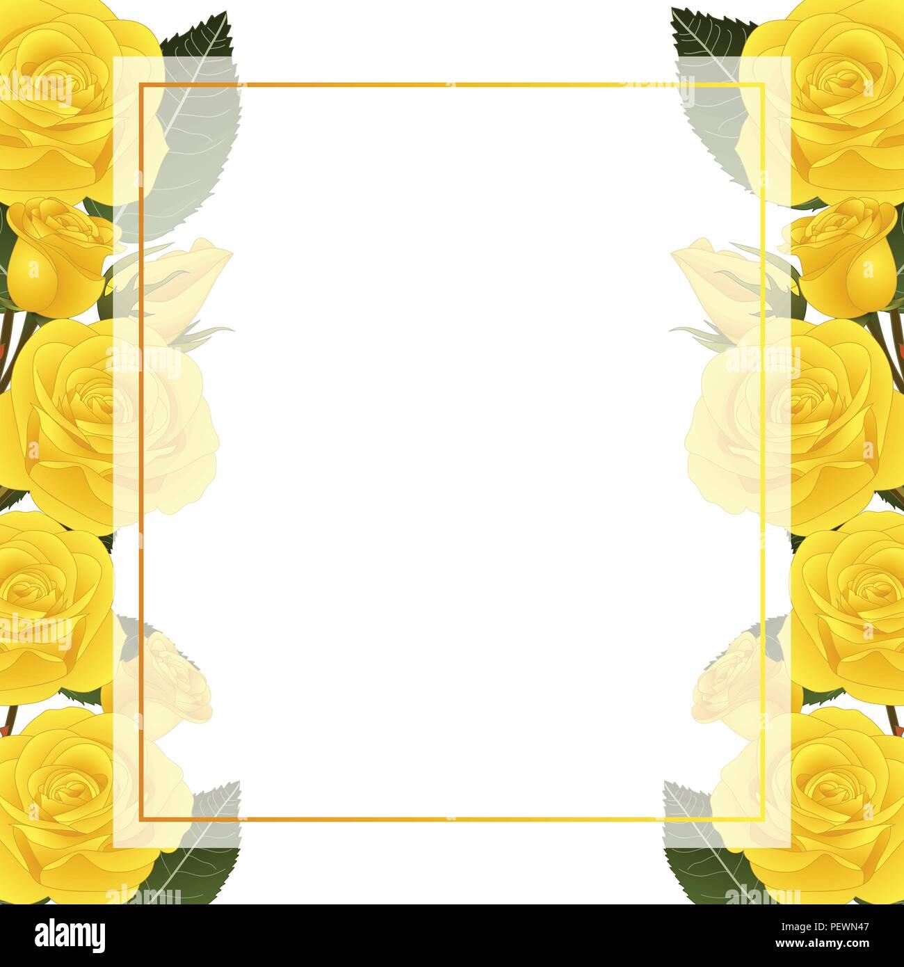 Yellow Rose Flower Frame Banner Card Border Isolated On White