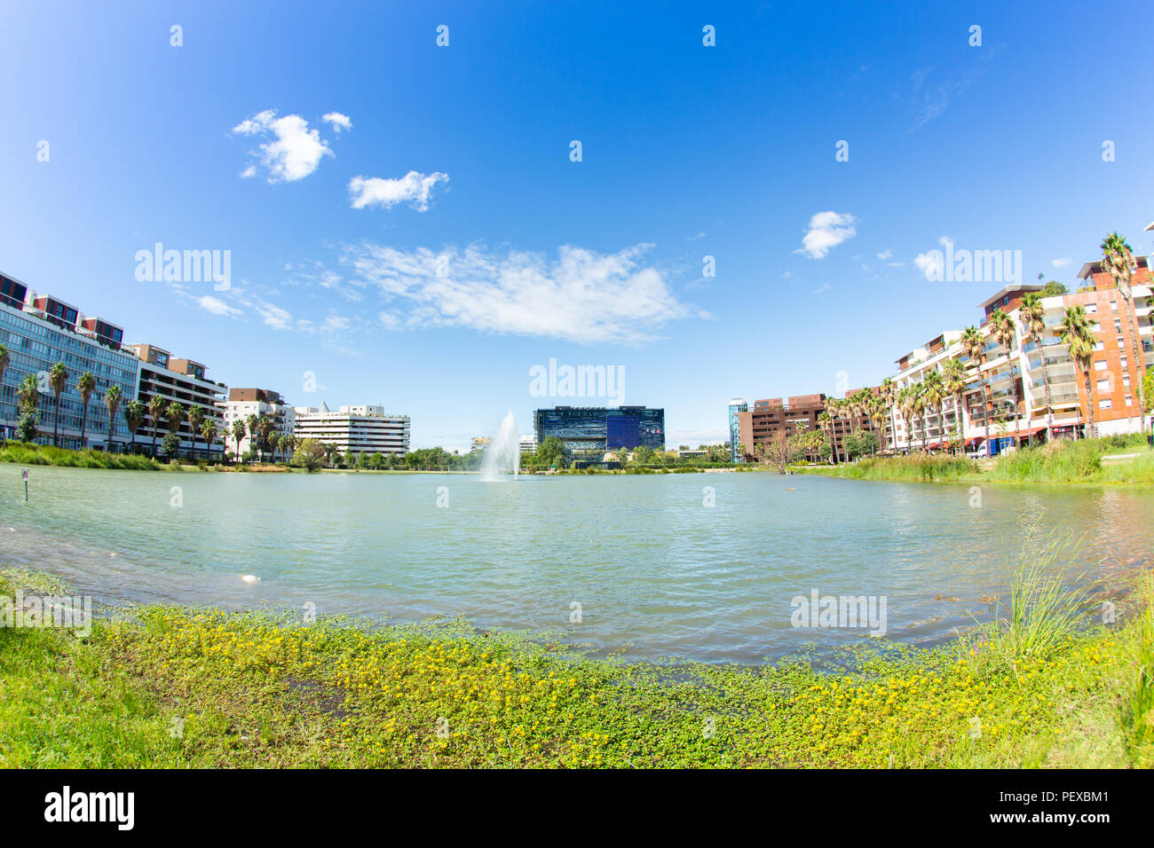 Montpellier Town Hall and Marianne Basin Stock Photo