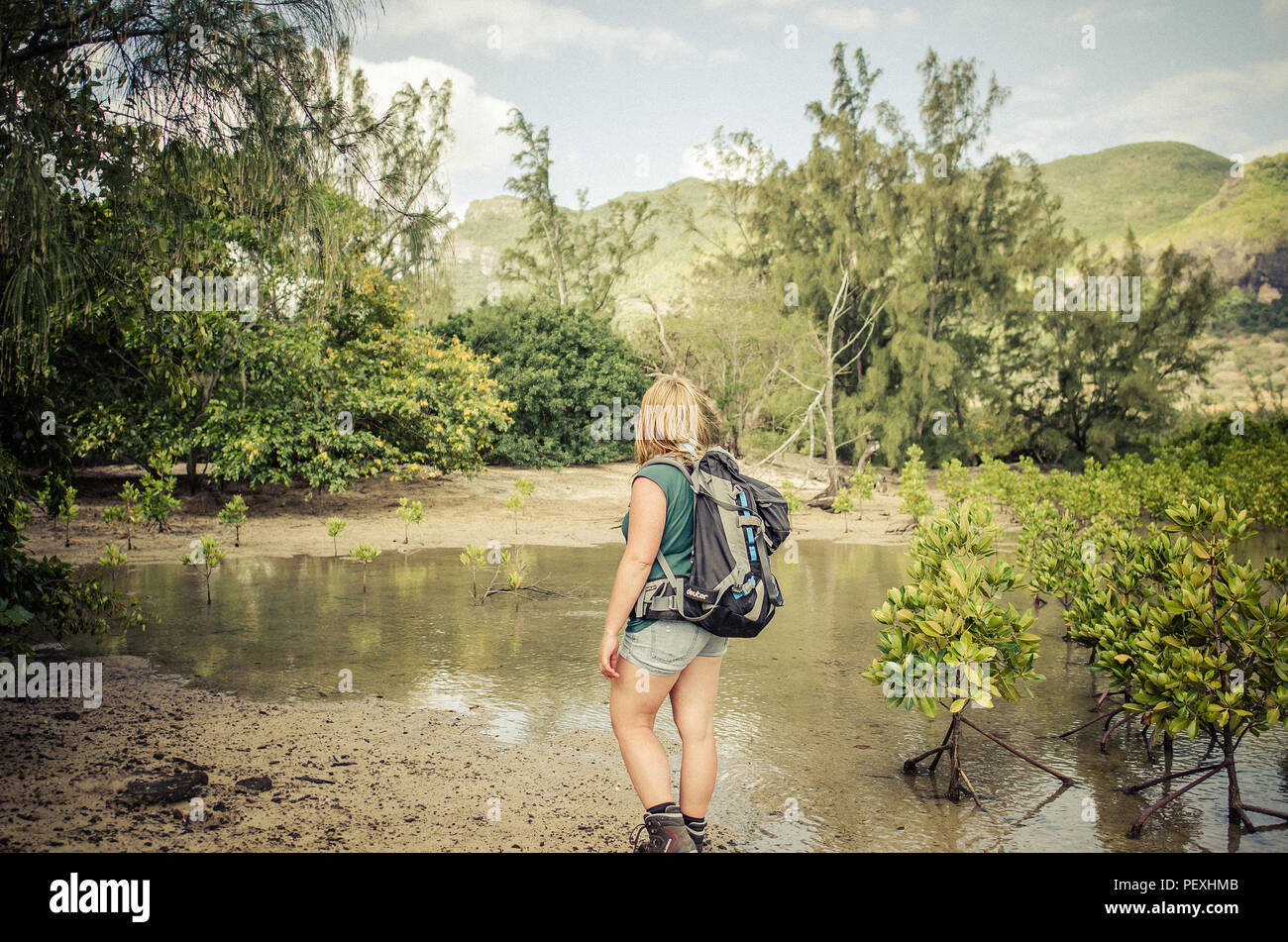 Girl backpacking trip trough mauritius mangroove forest - Stock Image