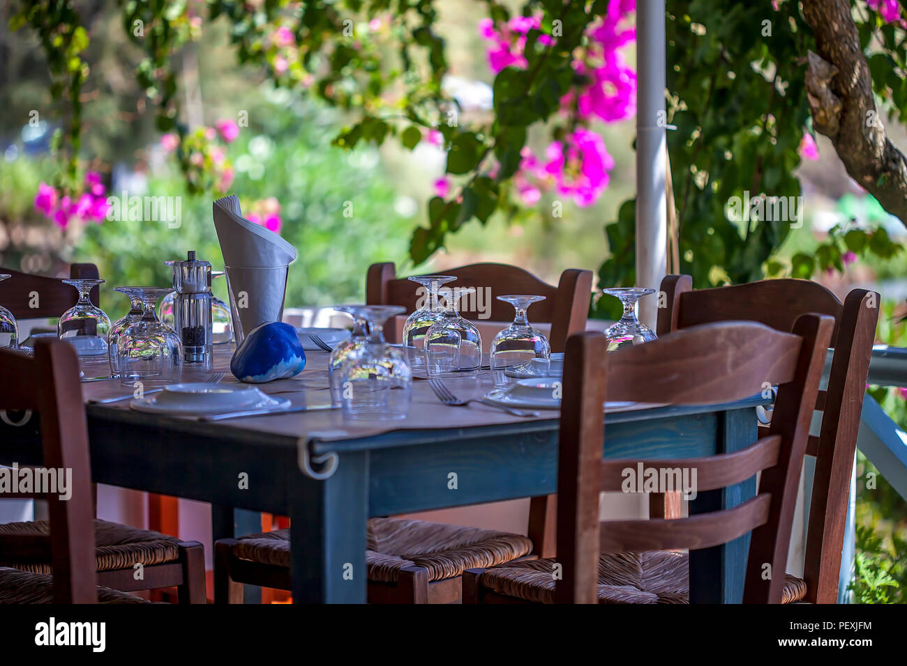 Table Set Up In Garden. Outdoor Garden Table With Pink ...