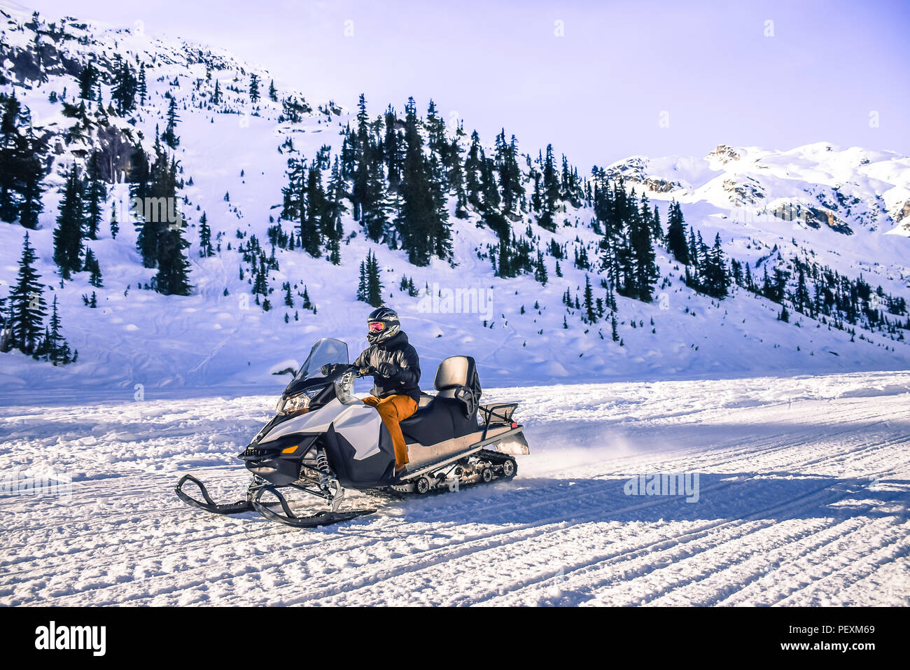 Man riding snowmobile, Callaghan Valley, Whistler, British Columbia, Canada - Stock Image