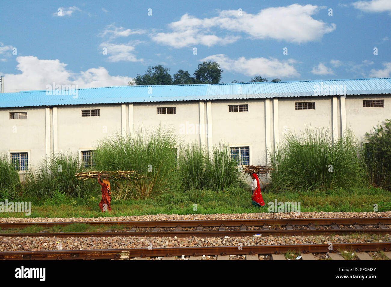 Two Indian women carrying wood walking along railroad tracks, Jaipur, Rajasthan, India - Stock Image
