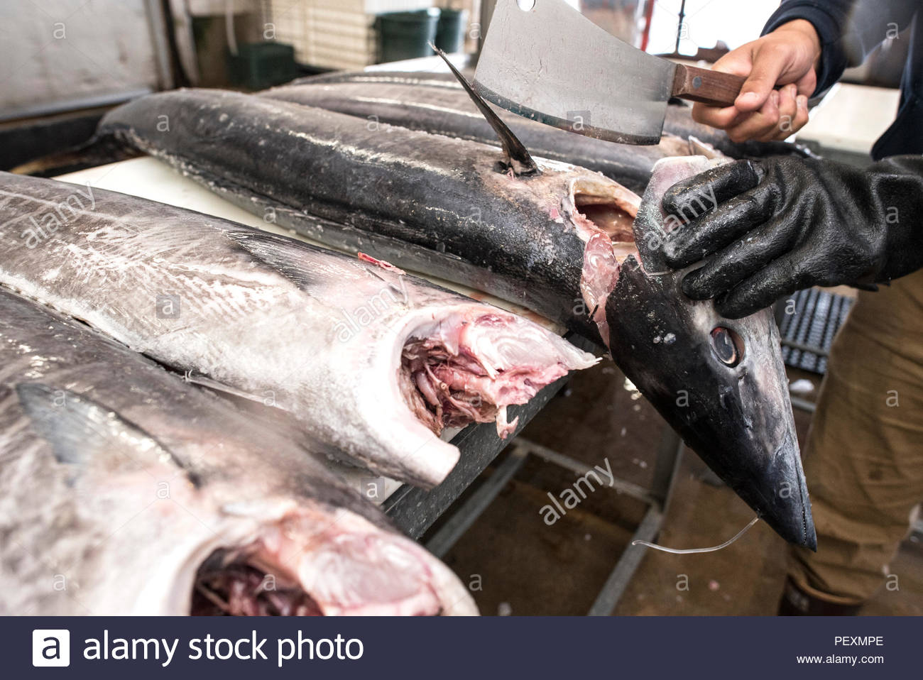 Fish monger chopping head off ono fish at fish market, San Diego, California, USA - Stock Image