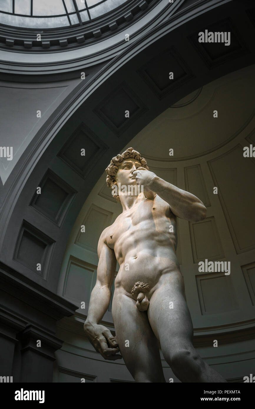 Statue of David by Michelangelo, Accademia Gallery, Florence, Tuscany, Italy - Stock Image