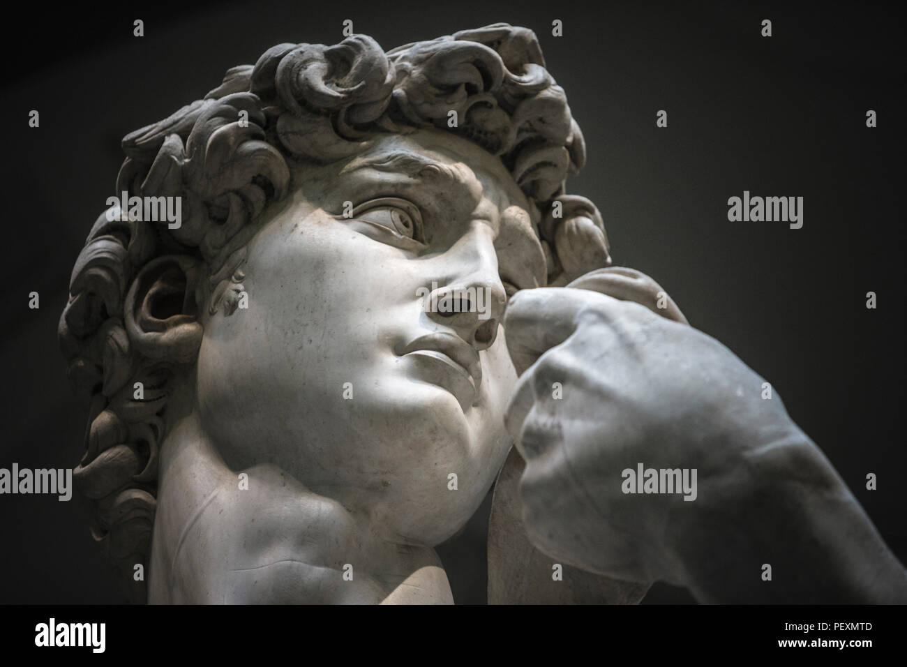 Head of statue of David by Michelangelo, Accademia Gallery, Florence, Tuscany, Italy Stock Photo