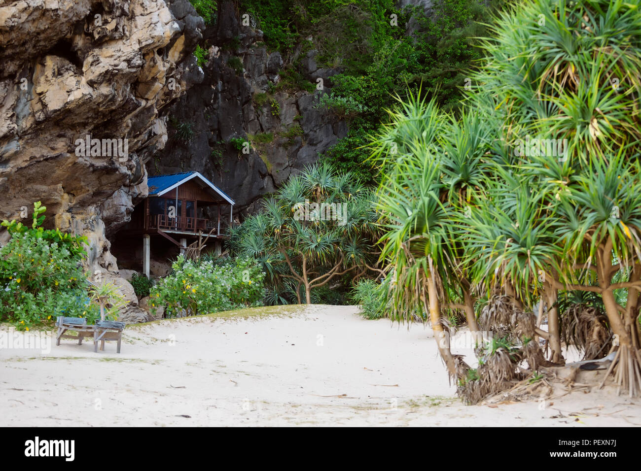 Bungalow near cliff on beach with palm trees, Banda Aceh, Sumatra, Indonesia - Stock Image