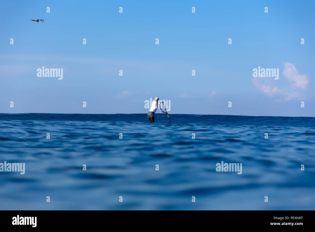 Woman paddle surfing in sea - Stock Image