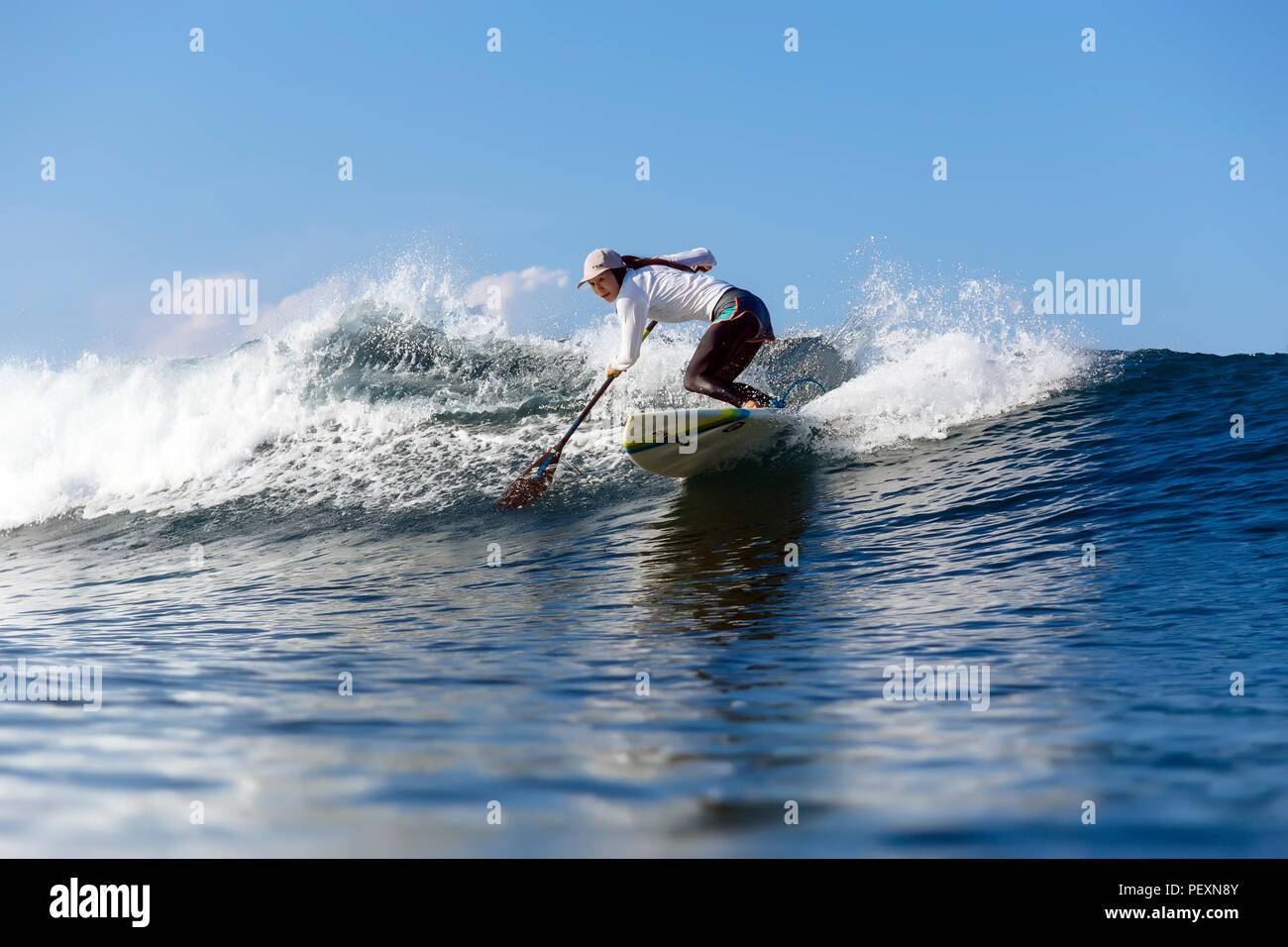 Female paddle surfer riding wave - Stock Image