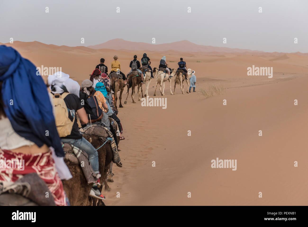 Tourists riding camels in Sahara Desert, Merzouga, Morocco - Stock Image
