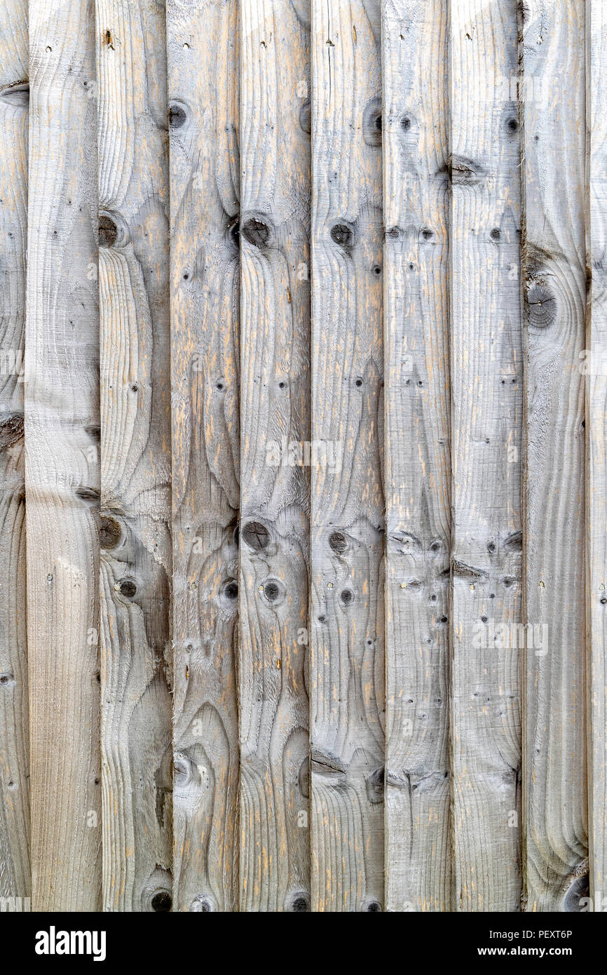Slatted wooden fence with multiple knots - Stock Image