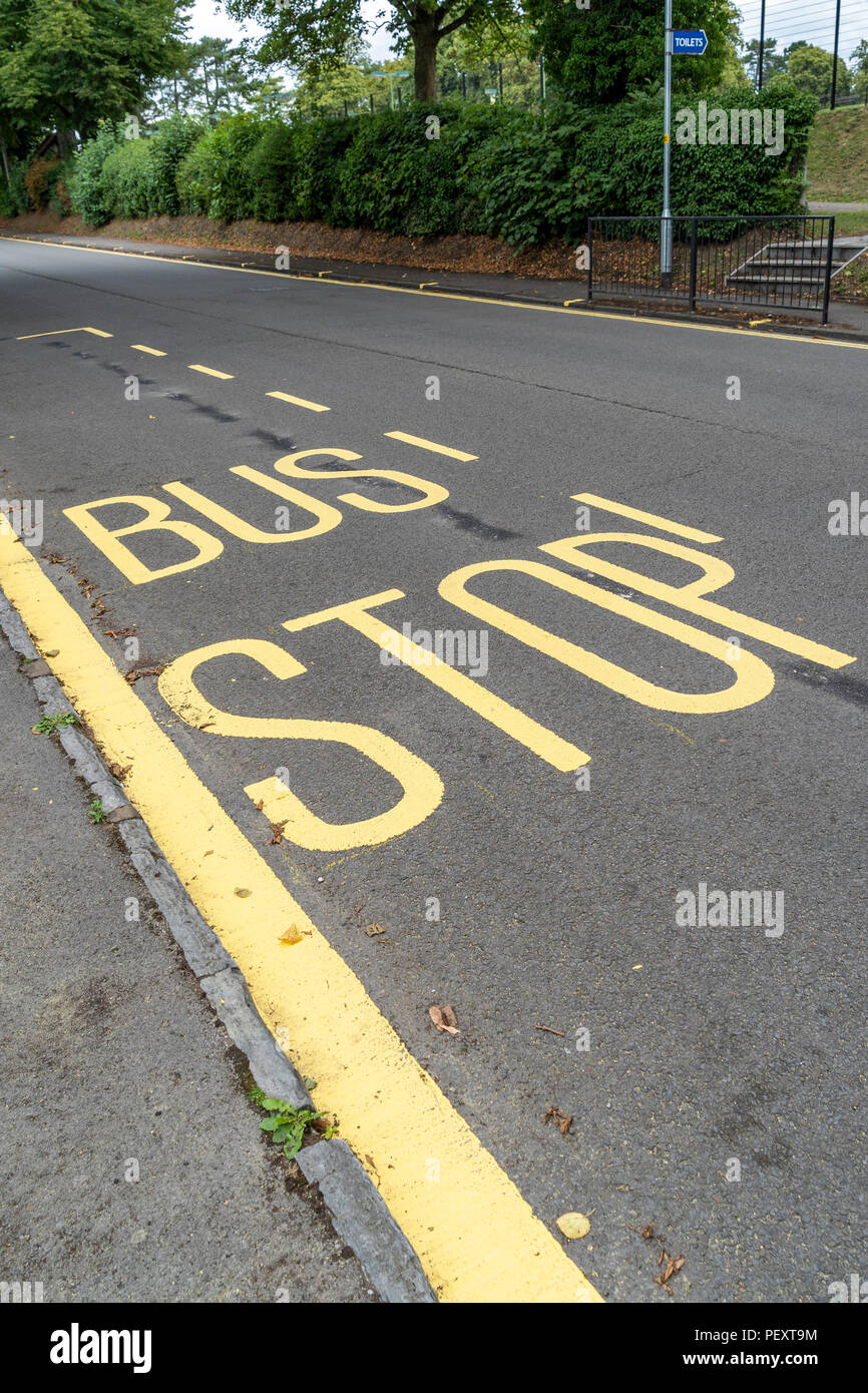 Bus stop yellow markings on road - Stock Image