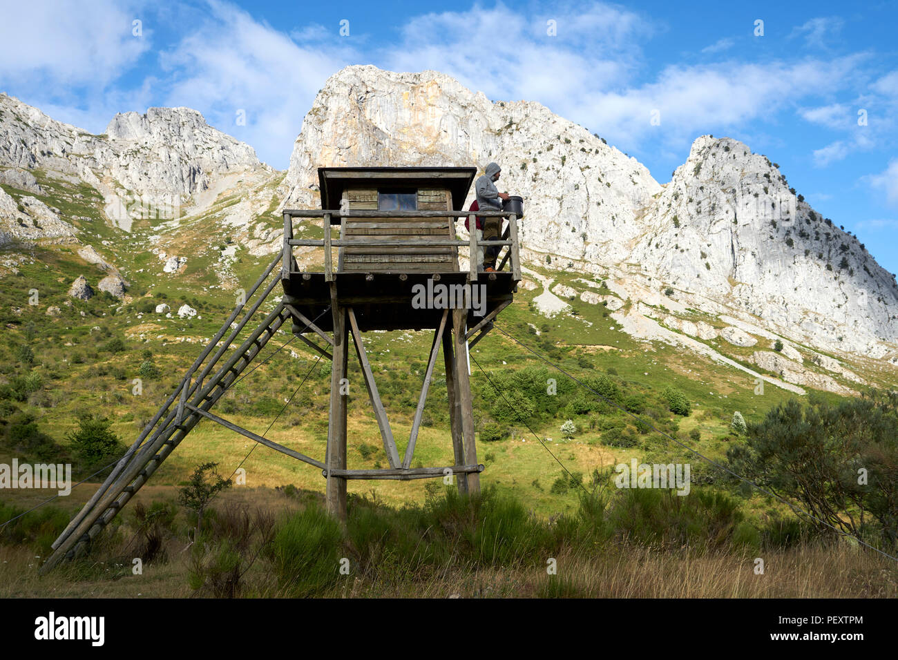Watchtower for wildlife watching in nature reserve, rewilding, ecotourism - Stock Image