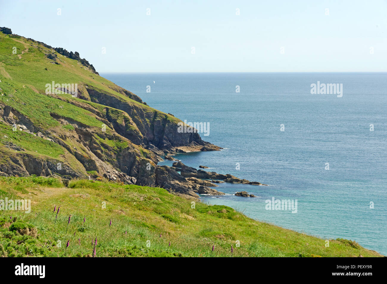 A section of the southwest coastal footpath near Hope Cove in the South Hams Devon uk - Stock Image