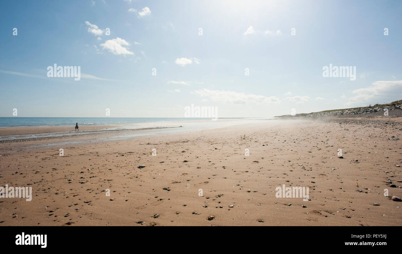 Concept photograph of a single woman walking along a beach towards a misty, bright haar. - Stock Image