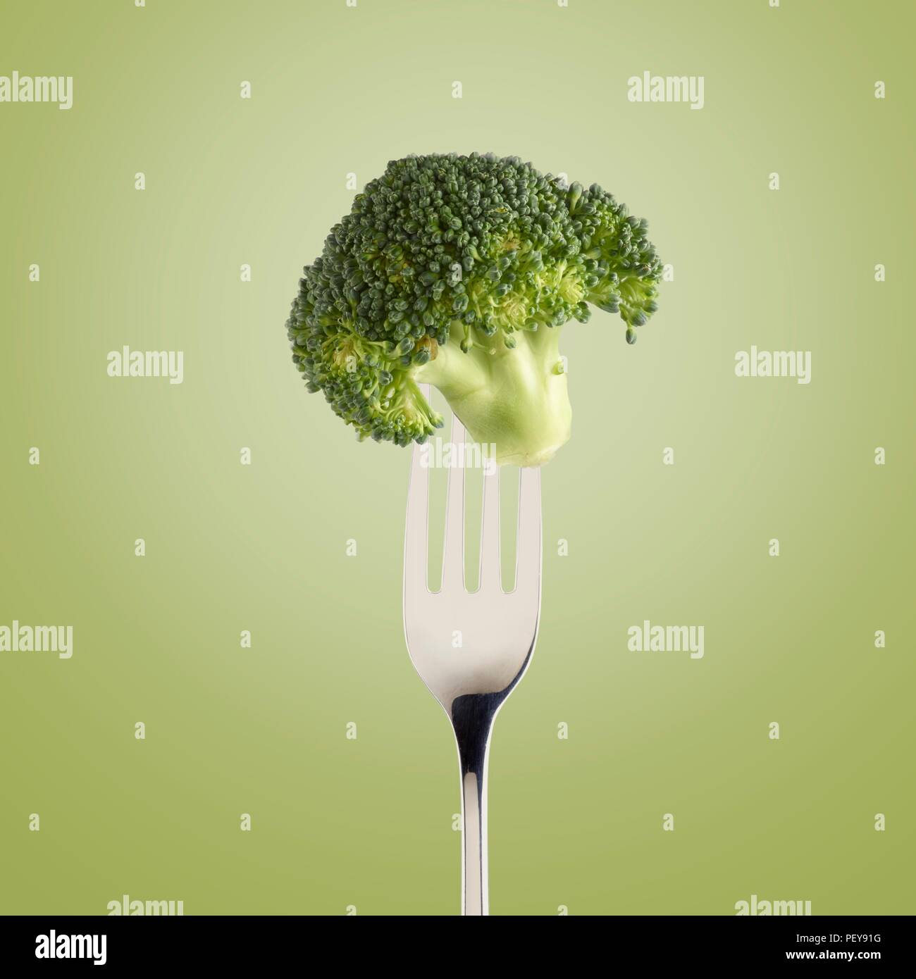 Broccoli on a fork. - Stock Image
