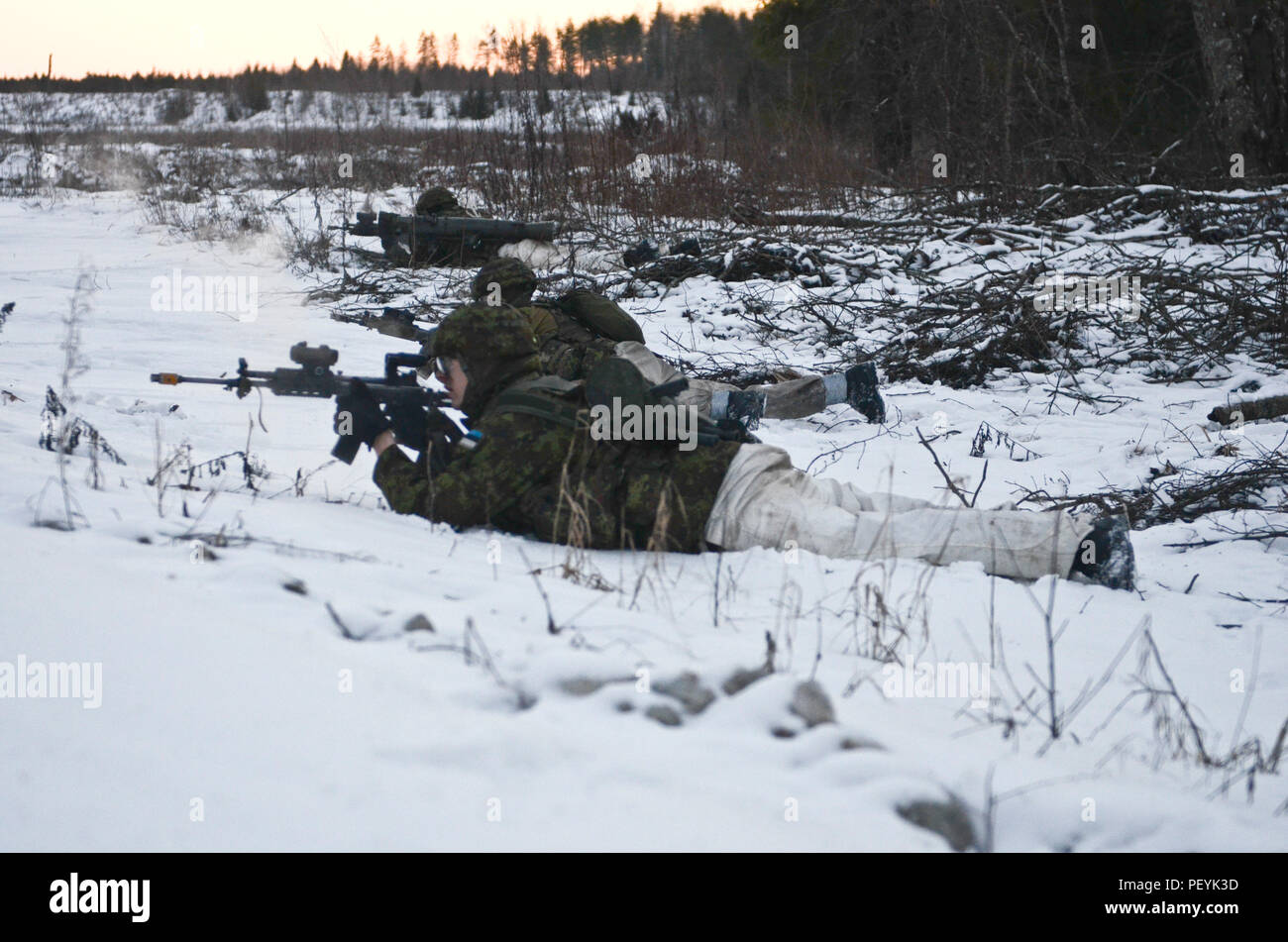 Estonian army defensive forces return fire on the U.S. Army opposing forces during Exercise Force on Force at Tapa Training Area in Estonia, Feb. 16, 2016. (U.S. Army photo by Staff Sgt. Steven M. Colvin/Released) - Stock Image