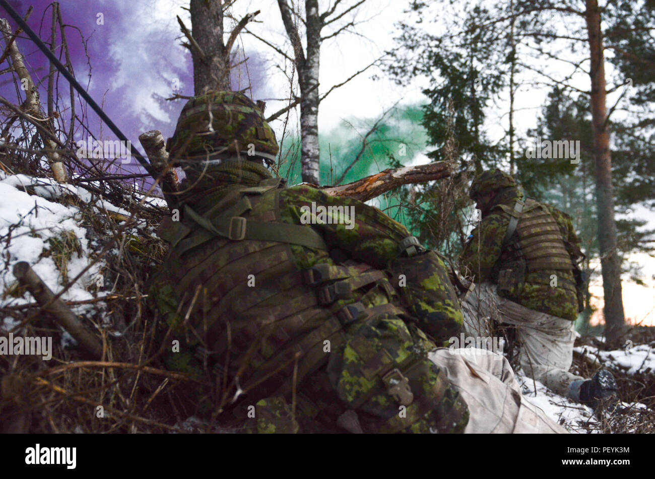 Estonian soldiers throw smoke bombs for concealment in order to approach the objective during Exercise Force on Force at Tapa Training Area in Estonia, Feb. 16, 2016. (U.S. Army photo by Staff Sgt. Steven M. Colvin/Released) - Stock Image